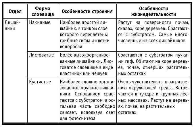 3. Начать заполнение таблицы «
