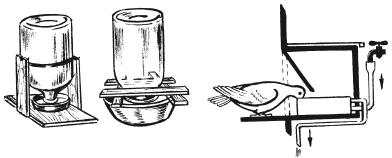 Как сделать голубям поилку