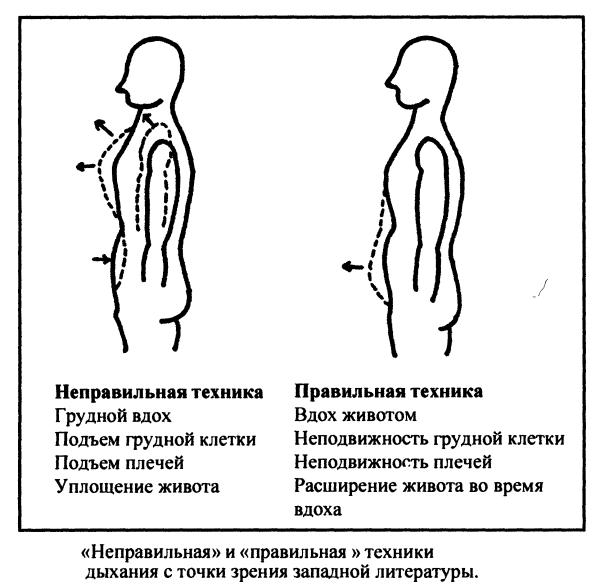 Позы гермофродиток